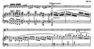 モーツァルトヴァイオリンソナタ第30番第三楽章カデンツァ